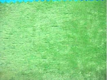 Velours de Panne  Fluor Groen