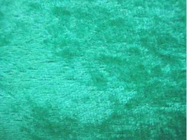 Velours de Panne  Groen