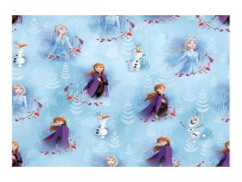 Disney Frozen 2  Met Anna, Elsa en Olaf