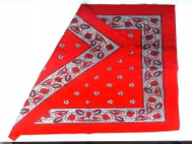Boerenzakdoek Rood met bloemetjes  BZ4
