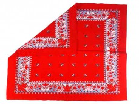 Boerenzakdoek  Rood met Franse lelie  BZ6