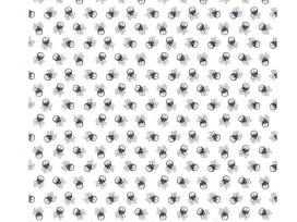 Poplin Katoen Wit/zwart met doodskopjes  Klein