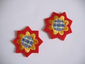 Applicatie Ster/bloem Rood/geel