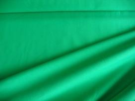 Tricot Nooteboom Groen  5438-25