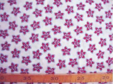 5y Katoen Rood-wit-blauw met rood/blauwe bloem 9800-5U