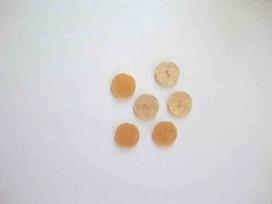 5h Kunststof knoop glanzend gemeleerd Goud 15mm. 337-S12