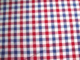 5m BBruit 10 x 10 Rood/wit/blauw met hartjes 5638-3N