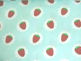 6u Dapper poplin Mint met aardbei in wolkje 2481-22N