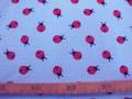 Oeko-Tex Kindertricot Bleu met lieveheersbeestjes 3663-03N