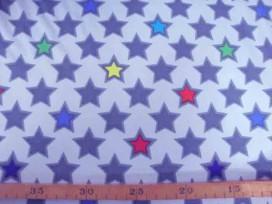 Softshell Lichtgrijs met ster 4141-61N